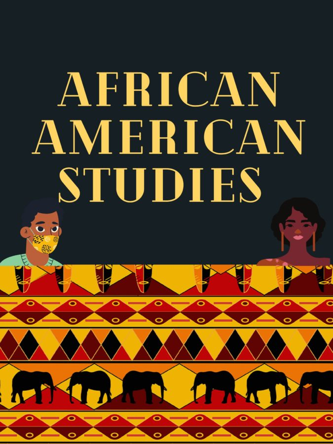 FISD African American Studies Course